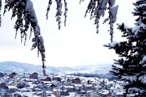 Berova- Zvicra e vogël në Ballkan