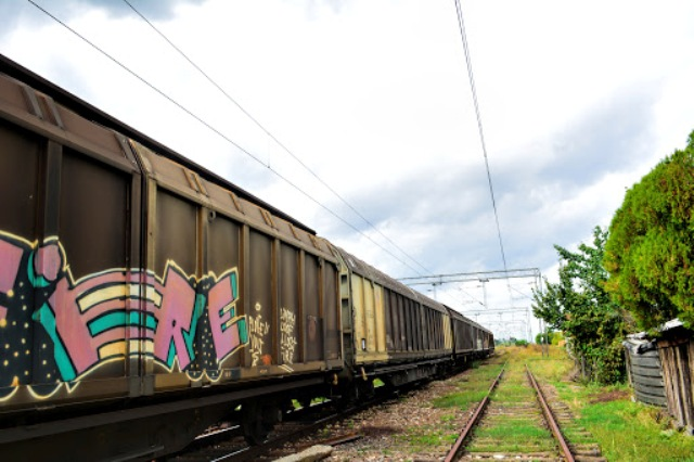 Train - Stela Dinova