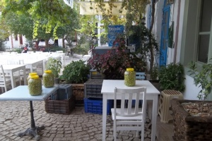 The Olive Fest of Ayvalik