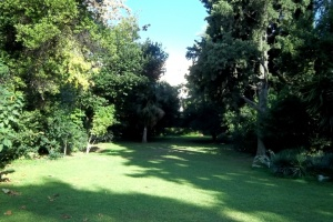 A WALK IN ATHENS' PRETTIEST PARK