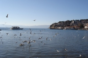 The Lake Ohrid has its counterpart in the universe