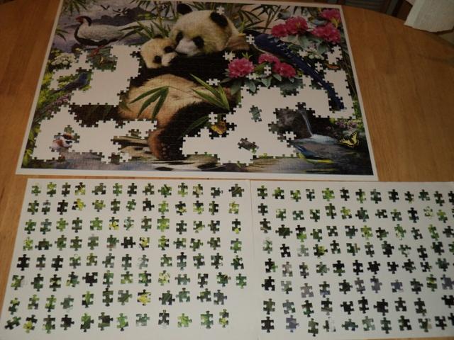 puzzle 10