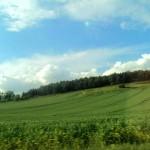 The Windows XP of European Turkey