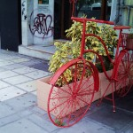 Flower bicycles – New life for old rusty bikes