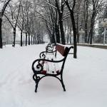 Χειμώνας στην πόλη του Σκόπιε, λευκή ηρεμία στο δημοτικό πάρκο