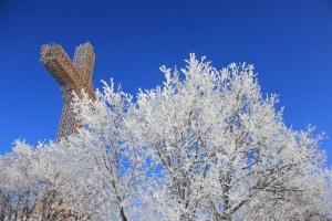 Водно, Милениумскиот крст над снежните дрвја