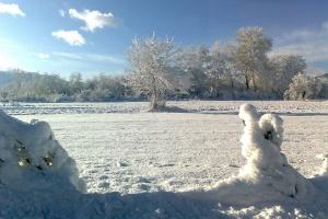 Снежен албум