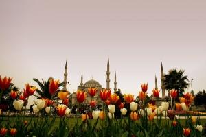 Истанбул – градот на лалињата
