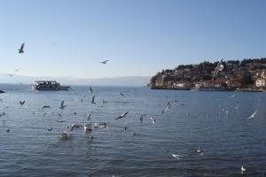 Охридско езеро има свој двојник во вселената