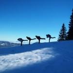 Планинарите се уметници во потрага по убавото