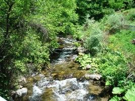 Brajcinska reka