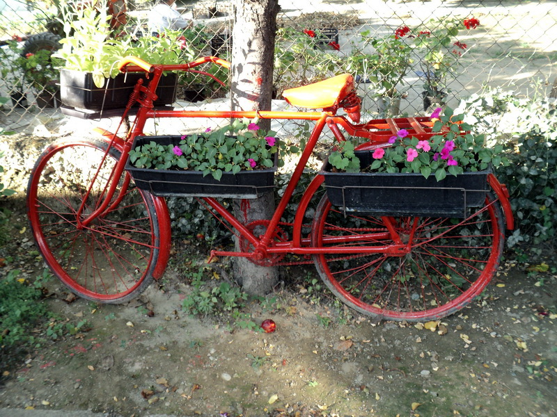 flower_bicycle4_balkon3