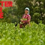 Здрава река носи здрав живот – Време е за акција против поплавите!